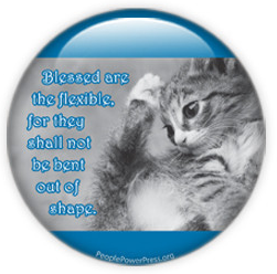 cat button, photo button