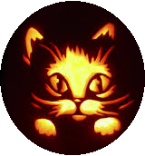 animal button, halloween button, fall button